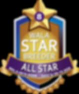 Big Rock All Star Logo.png