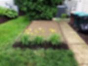 dog potty welcome pup dot com.jpg