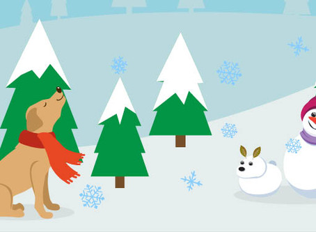 15 Winter Care Tips for your Dogs