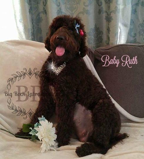 Baby Ruth Pregnancy Boudoir Photos Sitting