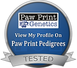 Paw Prints Badge.png