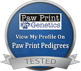 Paw Prints Badge.png