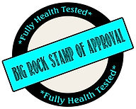 Big Rock Stamp of Approval.jpg