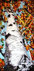 Autumn Birch by Alana Holst