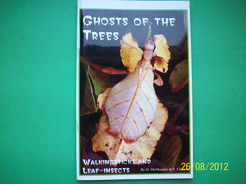 Ghost of the Trees