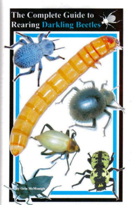 Rearing Darkling Beetles