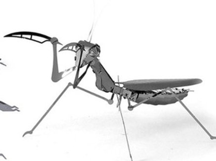 Praying mantis stainless steel