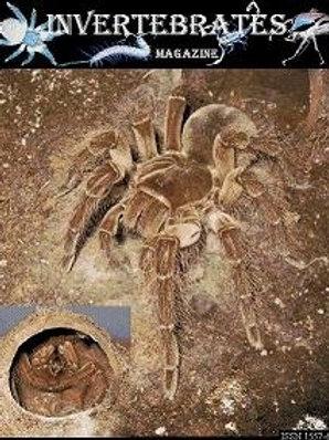 Invertebrates magazine