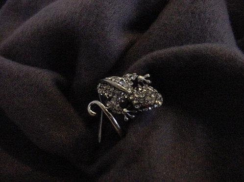 Chameleon Clear ring