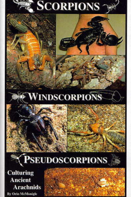 Scorpions, Windscorpions, Pseudoscorpions Culturin