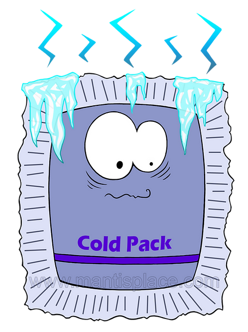 Cold Pack, small