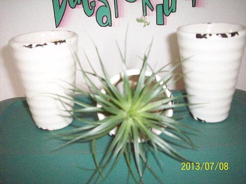 Vase, White pottery vase (1)