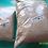Thumbnail: Wheat bran 1 lb. package