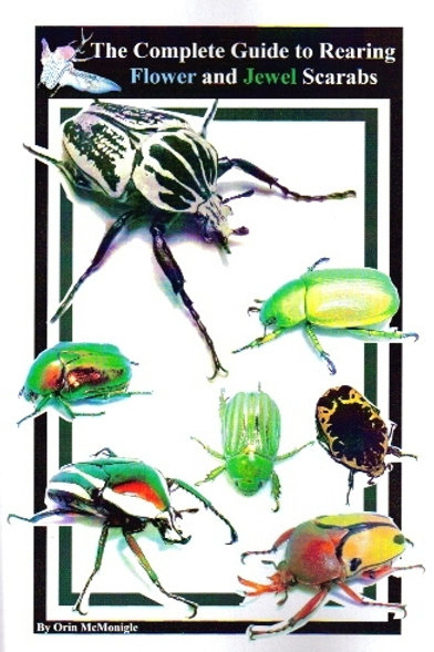 Rearing Flower and Jewel Scarabs