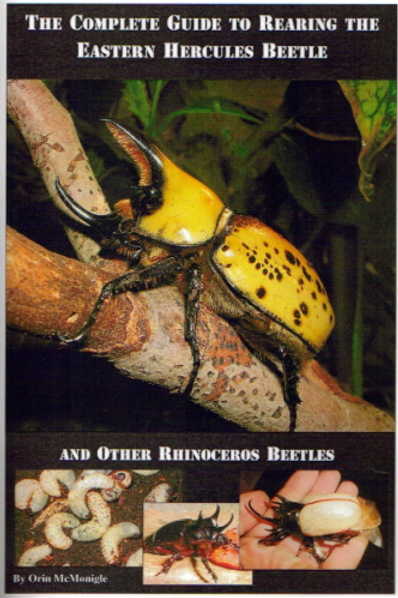 Rearing the Eastern Hercules Beetle
