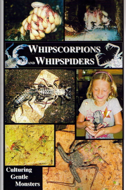 Whipscorpions and Whipspiders
