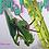 Thumbnail: Hierodula Patellifera Patellifera