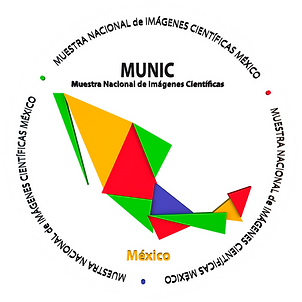 Botón_MUNIC_RM.png