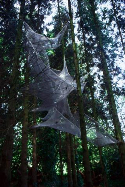 Spider Webs, stainless steel, 30ft