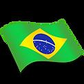 Brasil-256.png