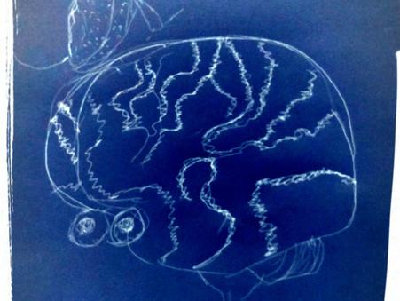 Insanity licks the membrane of the Cerebral Cortex