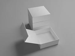 Hindged Box_01.png