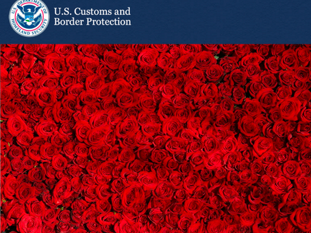 Customs Updates: United States Trade Representative's GSP 2020 Annual Review