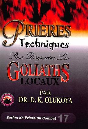 Prieres Techniques Pour Disgracier Les Goliaths Locaux (French Edition)