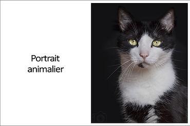 Portraitanimalier.jpg