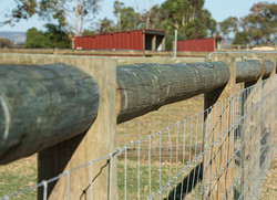 Property & Fencing