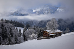 Winter (Allgäu, Germany)