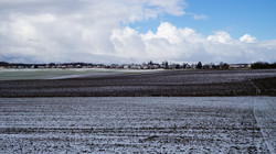 Last Snow of Winter 2021 (Bavaria, Germany)