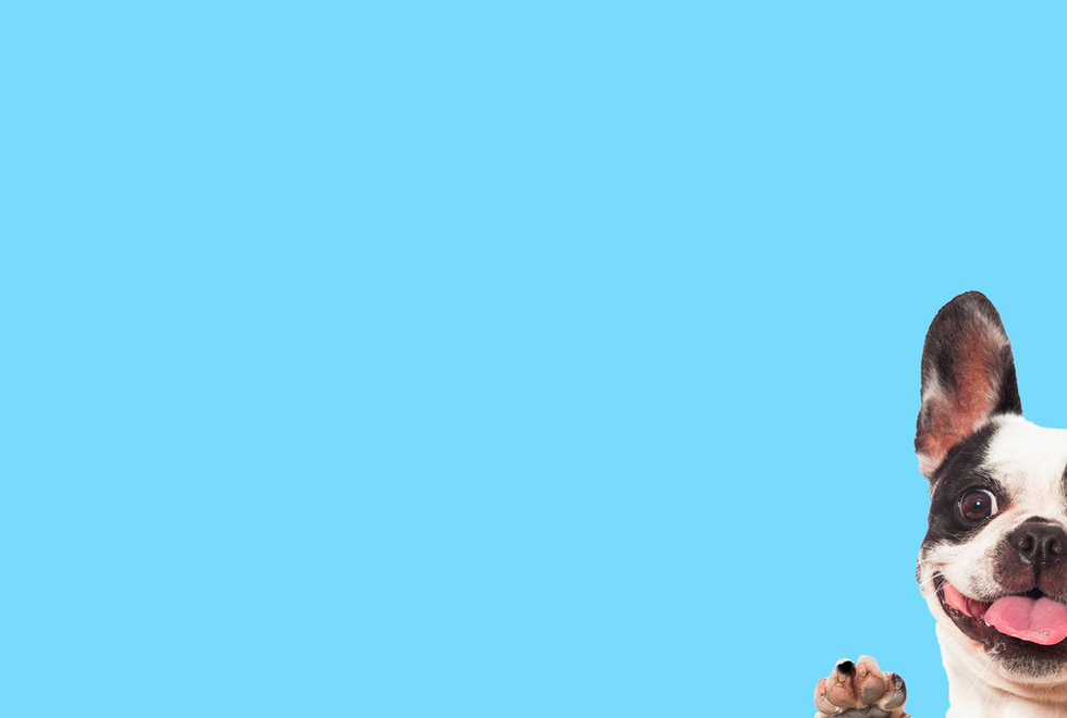 Customized web banner 2.png