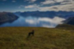 Grøthornet mot Sulafjorden