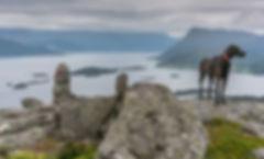 Arefjellet