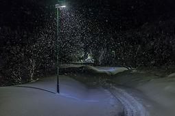 Turvegen til Skeide