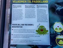 Paddeland