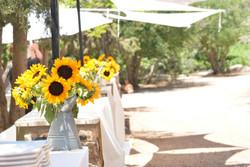 עיצוב חתונה בחווה