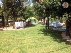 אוהלים בחוות מייסטר