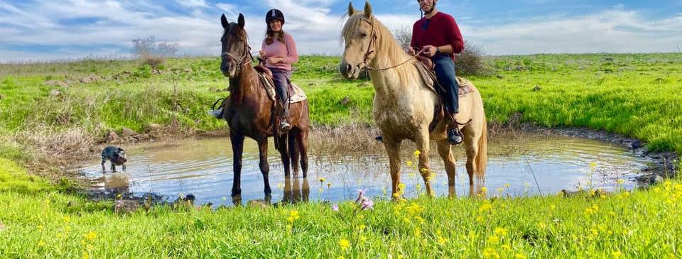 טיול סוסים בגולן - חוות האושר