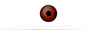 Pro One - Logo.png