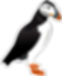 Puffin Logo - Right Facing.png