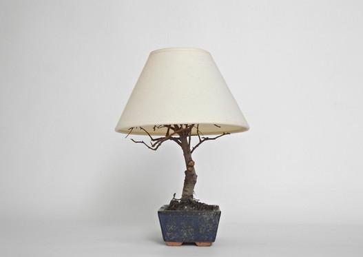 2019 06 24 lampada