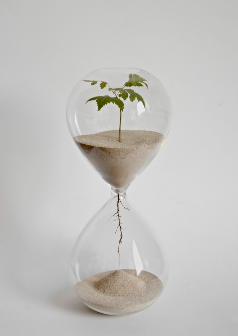 2018 06 4 rellotge