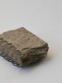 2018 01 05 fossil fosca bona_DSC0452.jpg