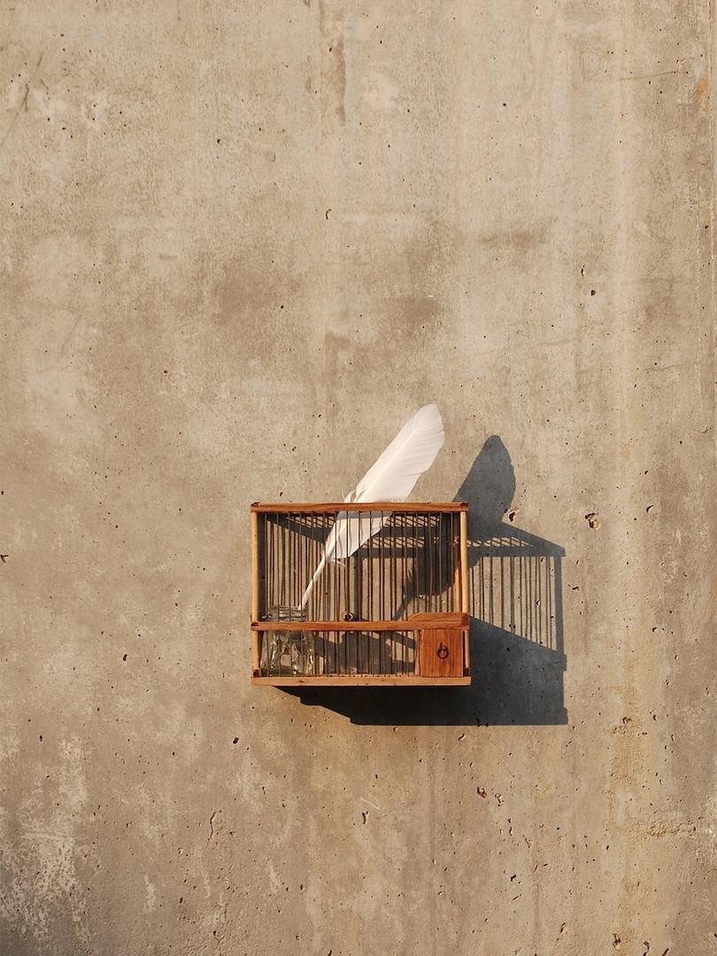 2012 05 31 Censura copia.jpg