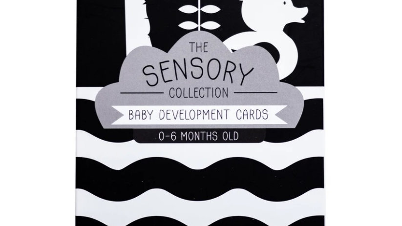 Baby Development Cards