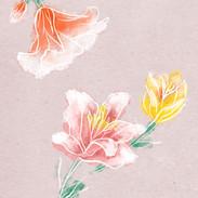 Spring_IG.jpg