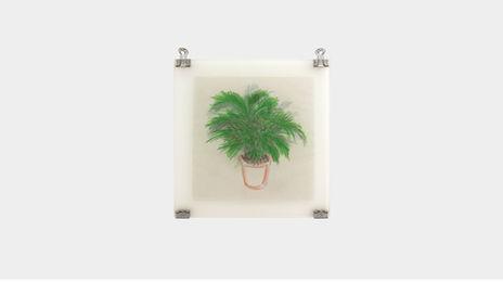 Plant_ p.m.1.jpg