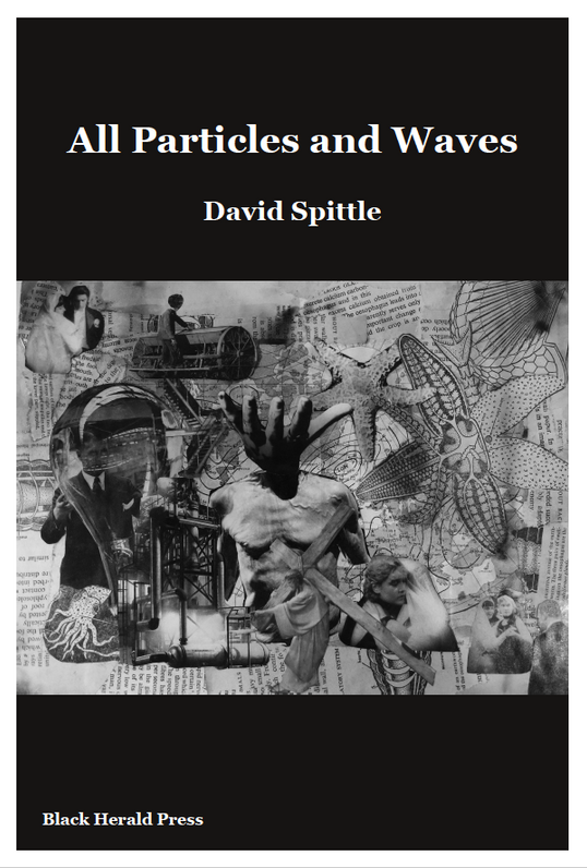 All Particles and Waves - David Spittle